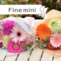 Fine! Mini 小さな贈り物